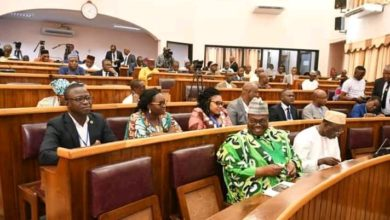 Assemblée nationale-adoption-vote du statut de l'opposition