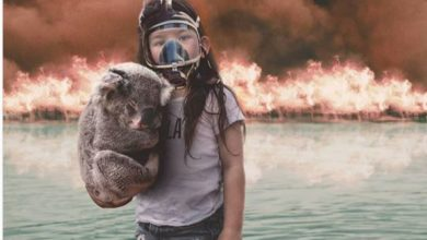 Incendies en Australie : Un photomontage d'une fillette fait le buzz sur internet