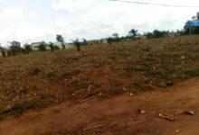 Bénin : L'agriculture pour sécuriser la terre et les populations